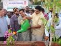Peethadhipathi Dr.Uma Alisha planting the sapling (3)