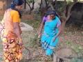 05-EnvironmentCleanliness-KahenaShahValiDargah-Tuni-30122019