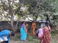 16-EnvironmentCleanliness-KahenaShahValiDargah-Tuni-30122019