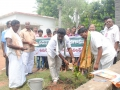 Planting a sapling at Gummuluru on the occasion of World Environment Day