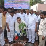 Innagration-of-Make-Tadepaligudam-Green-by-Sathguru-Dr.Umar-Alisha-Paidikondala-Manikyalarao