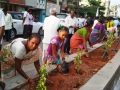 UARDT volunteers  participated plantting the sapling