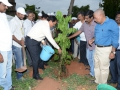 Andhra University Vice-Chancellor G.S.N. Raju has launched the tree plantation at Andhra University Campus. The convener of the UARDT Dr.Ananda Kumar Pingali, AU Registrar Prof V Uma Maheswara rao and AU staff has participated.