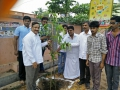 Plantation in Pithapuram as part of the Make Pithapuram Green Initiative