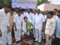 Innagration of Make Tadepaligudam Green by  Sathguru Dr.Umar Alisha ,Paidikondala Manikyalarao.